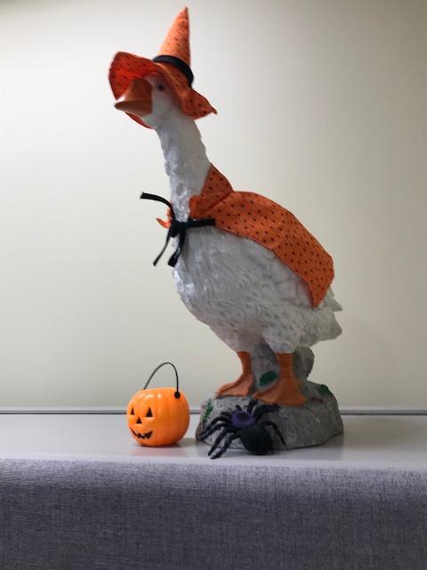 Halloween goose