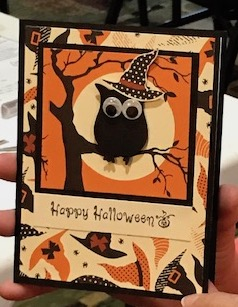 Diane owls