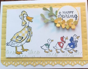 ducks 2 paper piecing w gingham