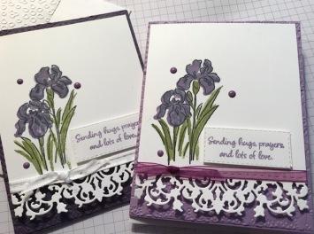 Inspiring Iris 2 choices