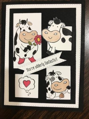 dawns cows...
